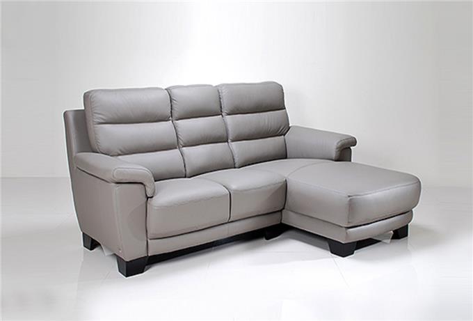 You Looking Sofa - High Quality Foam